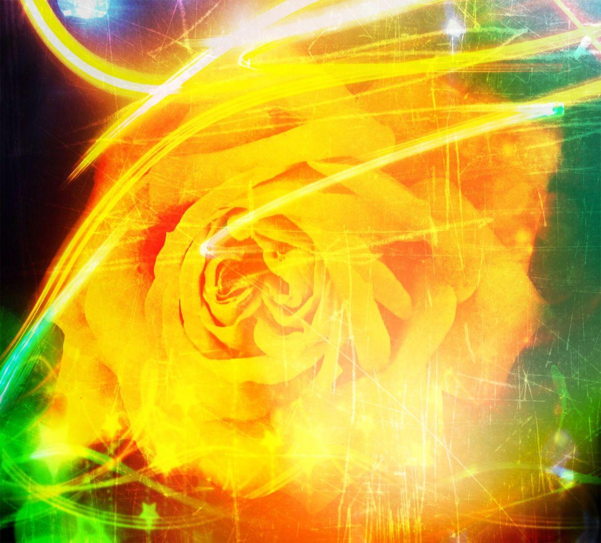 Sunshine Superflower