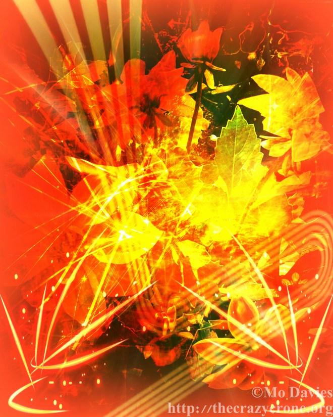 Summer Solstice Sparkles