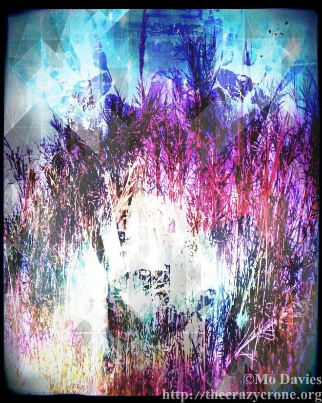 Grasses Whisper History