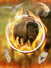 Bison Blessings: Earth Guardians